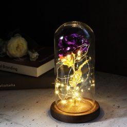 Rose éternelle en or violette sous cloche