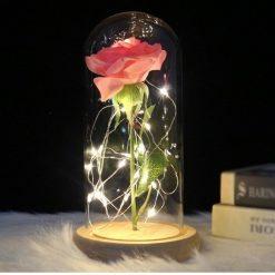 rose éternelle lumineuse rose sous cloche