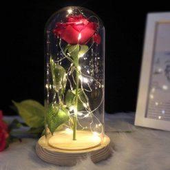 rose éternelle rouge lumineuse sous cloche