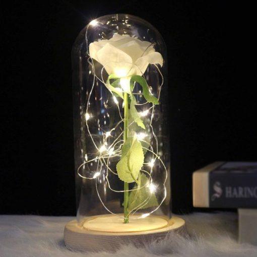 rose éternelle lumineuse blanche sous cloche