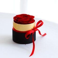 box d'une rose éternelle rouge