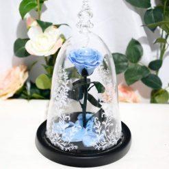 rose éternelle sous cloche bleue claire la belle et la bête