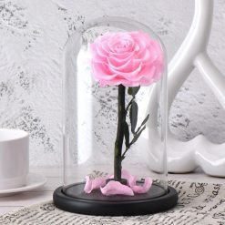 rose éternelle rose sous cloche classique