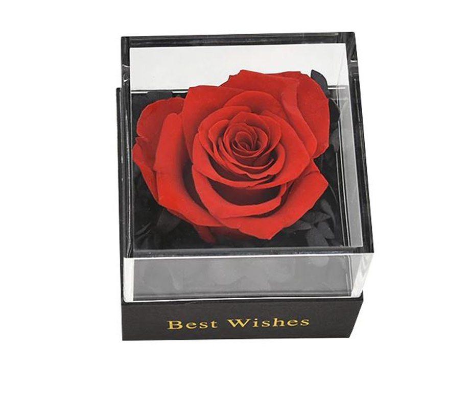 Rose éternelle sous boite