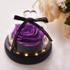 rose éternelle lumineuse violette sous cloche mon amour