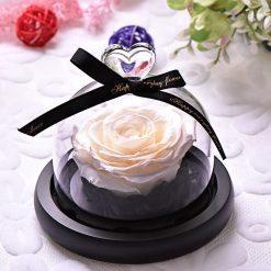 rose éternelle lumineuse blanche sous cloche mon amour