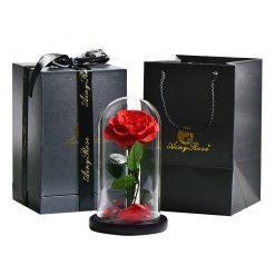 rose eternelle sous cloche boite prestige