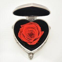 rose éternelle en boite en forme de coeur rouge