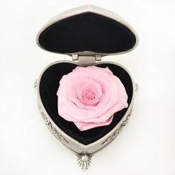 boite rose éternelle rose en forme de coeur