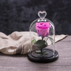 rose éternelle sous cloche violette my love