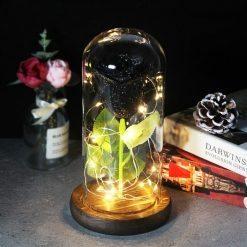 rose éternelle lumineuse sous cloche noire à paillettes