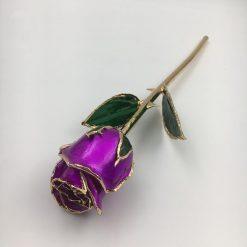 rose éternelle sur tige violette bella
