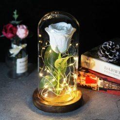 rose éternelle lumineuse sous cloche blanche à paillettes