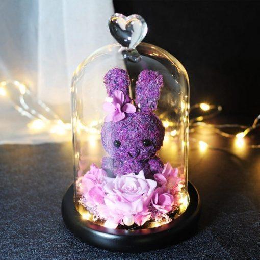 rose éternelle lumineuse violette sous cloche avec lapin