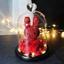 rose éternelle rouge sous cloche lumineuse avec lapin