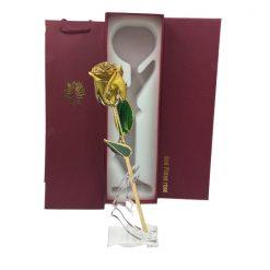rose éternelle en or jaune