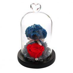 composition rose éternelle rouge sous cloche avec chiot bleu